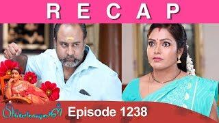RECAP : Priyamanaval Episode 1238, 09/02/19
