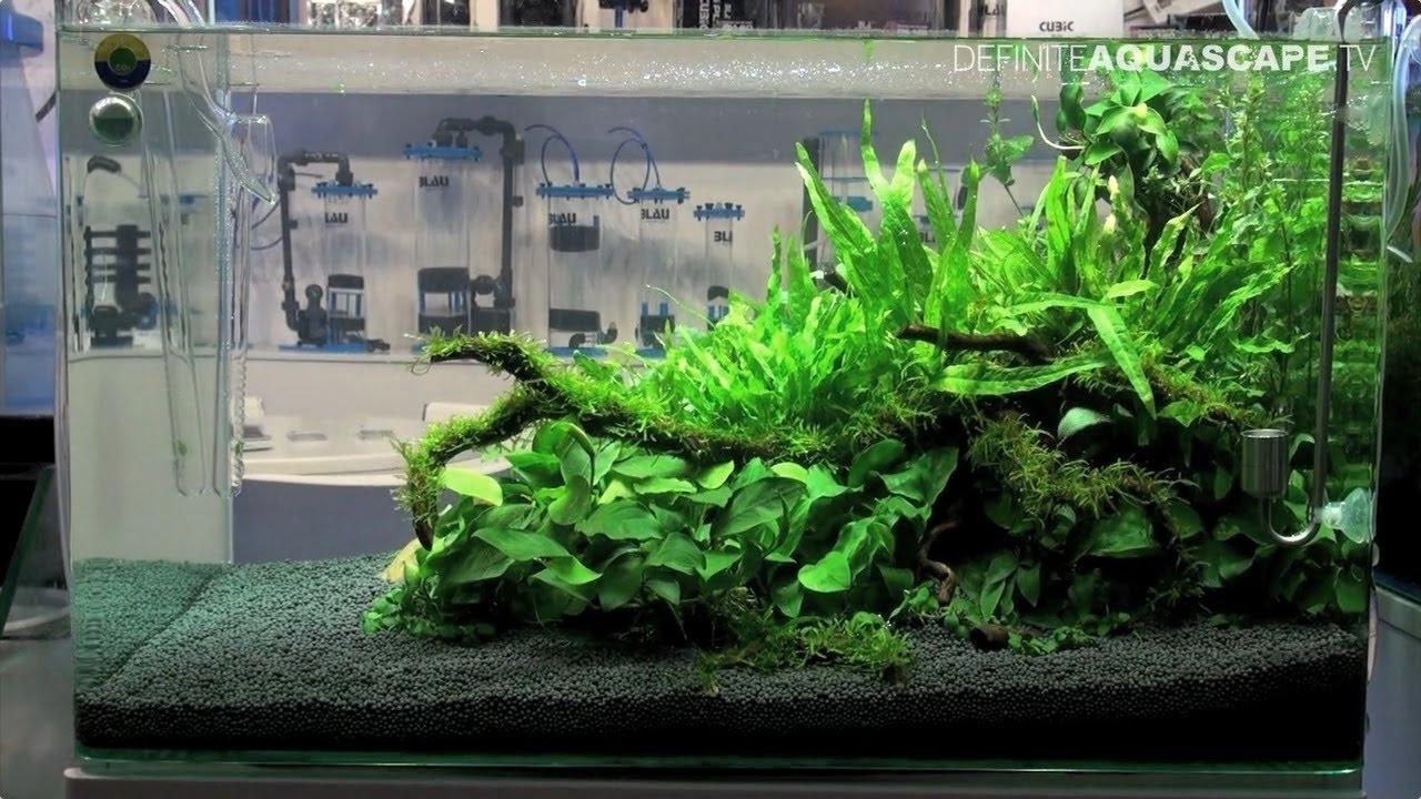 blau nano aquarium