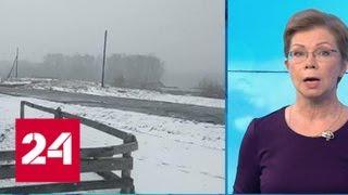 """Смотреть видео """"Погода 24"""": арктический холод ворвался в горящую Сибирь - Россия 24 онлайн"""