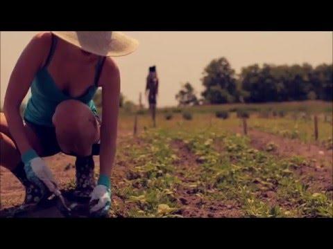 Organic Farming 2017