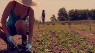 Organic Farming 2016