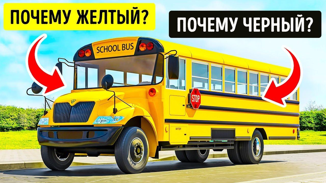 Вот почему школьные автобусы в некоторых странах в основном желтые!