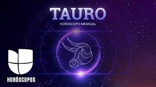 Tauro en el mes de Capricornio  Univision HorГіscopos
