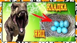 Динозавр РЕКС защищает кладку яиц