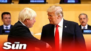 Trump: 'Boris and Farage are gonna do some tremendous things'