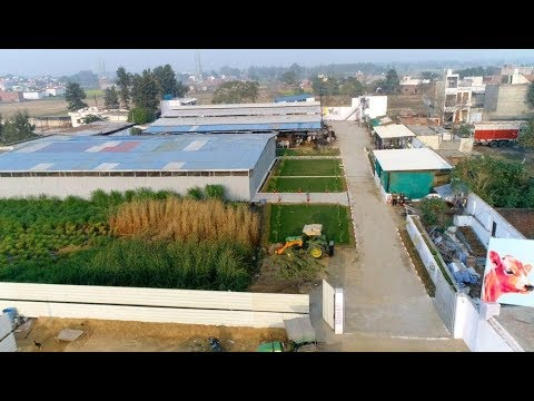 VSURE FARMS | CORPORATE FILM | BEST COW MILK | MILK PRODUCTS | ORGANIC FARM