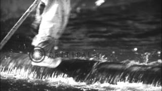 Lumberjack water sports, trained deer, trout fishing and other amusements at a sp...HD Stock Footage