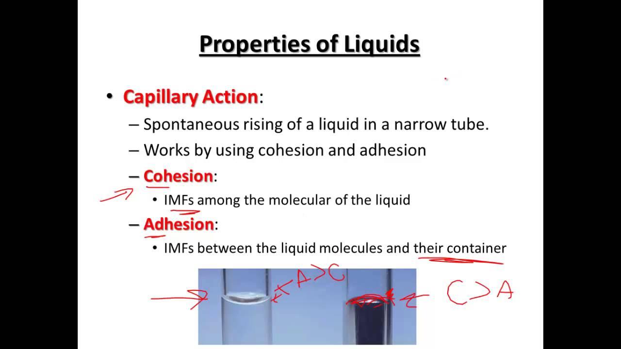 Ap Video 10 3 - Properties Of Liquids