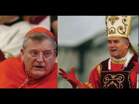Cardinal Burke & the SSPX: The Big Picture