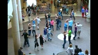 WCS Flash Mob Dance - Regina, SK