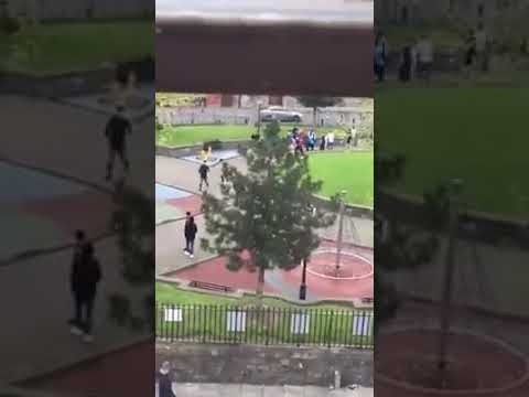 Gang of teenage Scumbags assaulting people in dublin