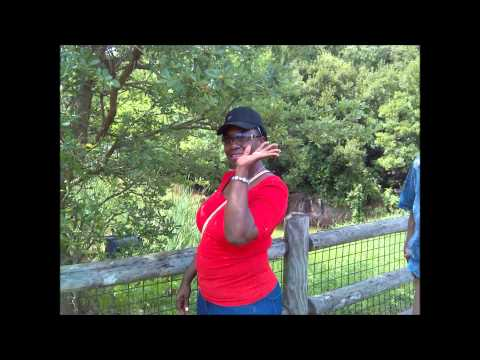 A Trip to the Jackson, Mississippi Zoo