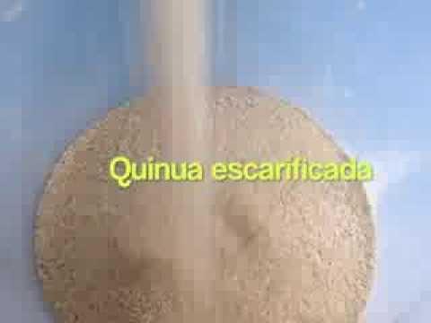 Escarificadora / Desaponificadora de quinua - Vulcano Tenología Aplicada EIRL. / Quinoa Scarifier
