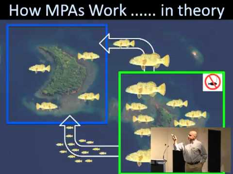 Glenn Almany - Do fishers get any benefits from marine protected areas?