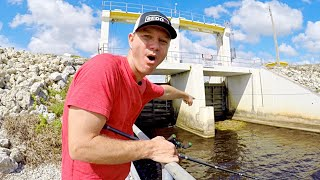 Catching GIANT BASS on SWIMBAITS and BIG WORMS!