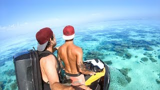 YBS Lifestyle Ep 39 - BEST CONDITIONS EVER | Friendly Kangaroo | Squid Catch And Cook