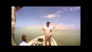 new g loomis e6x inshore rods and shimano stradic fk reels