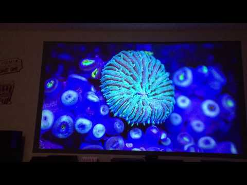 Black projector projection screen (Az Black Pearl Paint) Epson 3600e 3500 testing home theater DIY