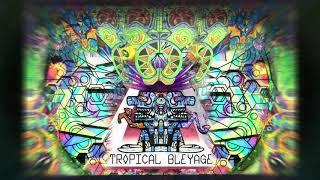 Tropical Bleyage – Unreleased Oldschool Set 2005-2009
