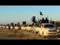 Fmr. Amb. Vershbow: Trump's travel ban may help ISIS