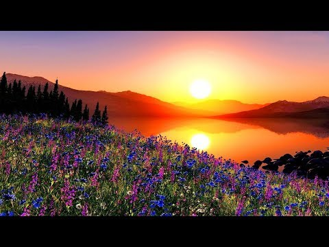 GOOD MORNING, BEAUTIFUL - (Lyrics)