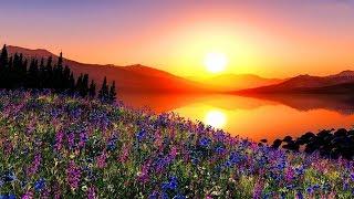 GOOD MORNING, BEAUTIFUL - (Lyrics)