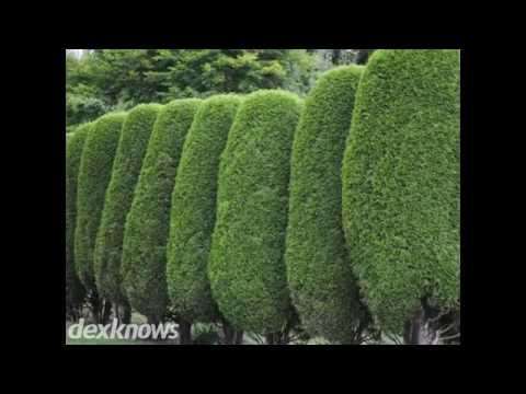 Green Biz Nursery Landscaping Inc Fayetteville Nc 28306 8146