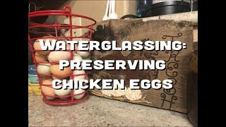 Waterglassing | Preserving Chicken Eggs | The Urban Lady Bug