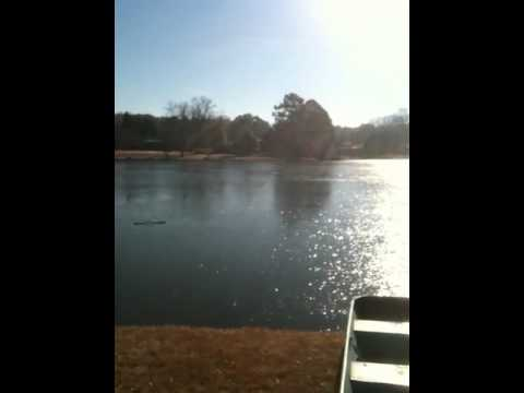 Water skipping record w/ tennis ball