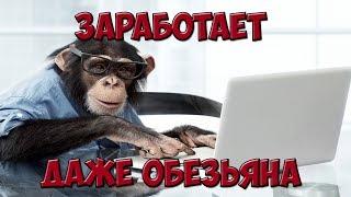 БМ  Как начать, если ничего не умеешь Жёский разбор с Петром Осиповым