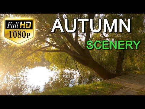 Beautiful Nature Video Full HD 1080p - Beautiful Autumn Nature Scenery - Beautiful Planet Earth