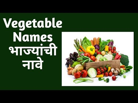 Vegetable Names In English And Marathi || भाज्यांची नावे ||  Daily Used Words