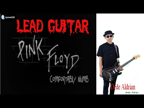 Download Comfortably Numb (Pink Floyd cover LEAD) by Dede