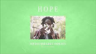 "Daniel Caesar type beat 2019 ""HOPE"" ㅣ R&B Soul Instrumental With chorus"