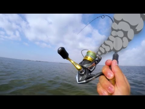 gang of giant redfish smoke tiny 1000 reel
