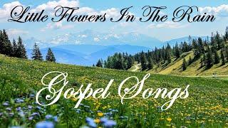 LITTLE FLOWERS IN THE RAIN 2020 Inspirational Country Gospel By Lifebreakthrugh