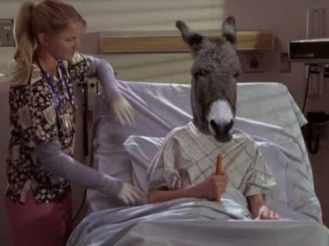 Scrubs - Donkey Show