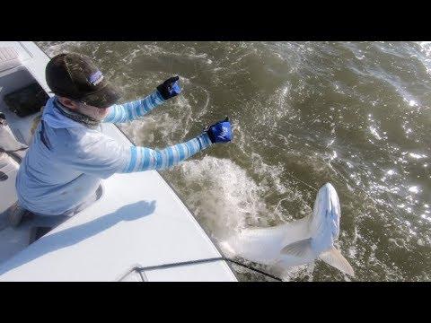 10 Steps To Catching Tarpon Fly Fishing