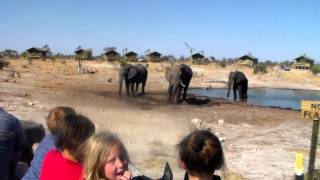 Botswana Tour - Salt Pans & Elephants