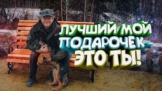 Лучший подарок на мой юбилей щенок немецкой овчарки Сгоняли на базу Чебаркуль