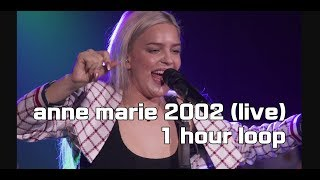 [1 hour loop] anne marie 2002 live version (1시간연속재생)