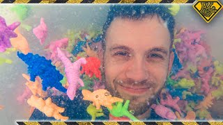 Download We Put 1000 Expanding Dinosaurs In A Hot Tub! Mp3 and Videos