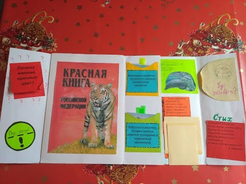Проект Красная книга / Возьмем под защиту 2 кл