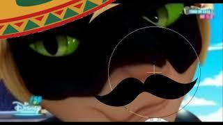 Кот нуар горячий мексиканец