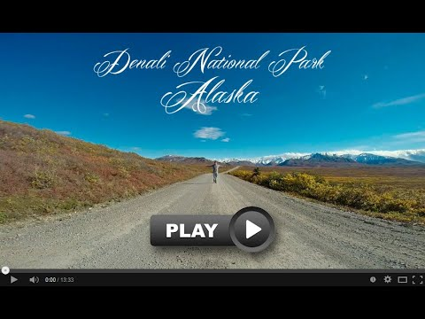Denali National Park, Alaska 2014 Trip