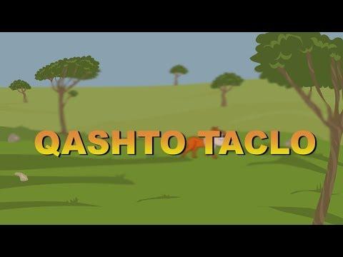 Qashto Taclo Western Syriac (Suryoyo/Turoyo/Surayt)