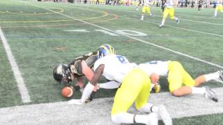 SCTop10: Towson Football's Christian Summers makes amazing catch vs Delaware