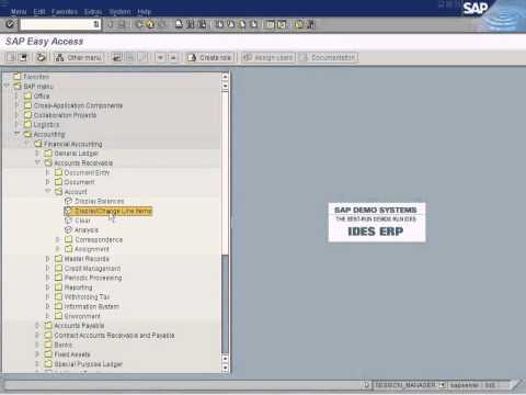SAP Mass Changes
