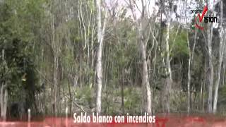 El municipio de Felipe Carrillo Puerto no ha sido blanco de incendios forestales