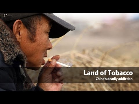Land of Tobacco: China's deadly addiction